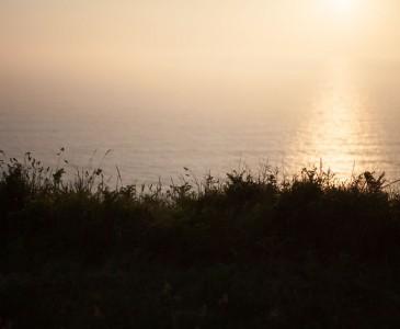 Summer's evening